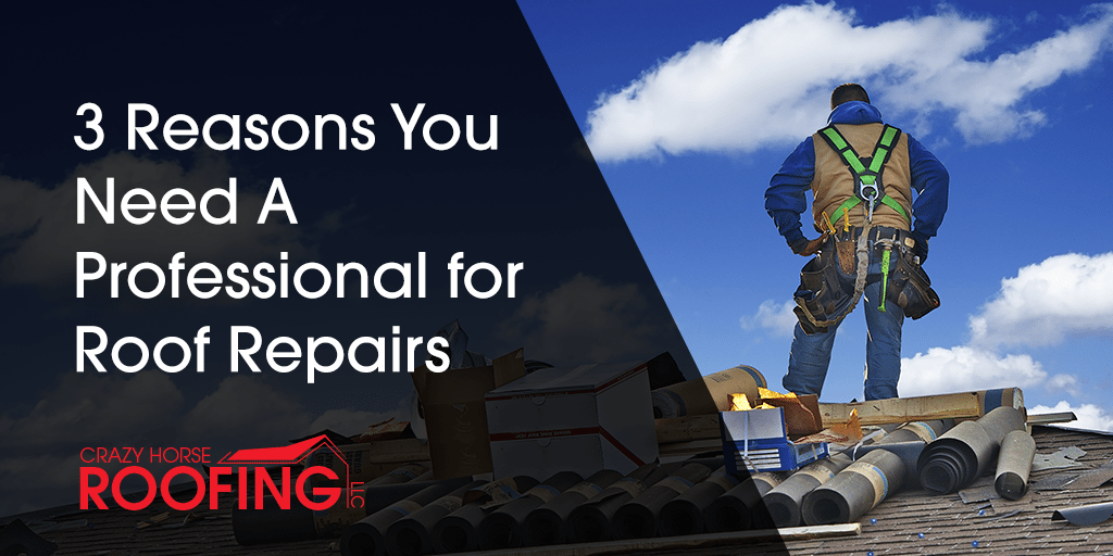 3 Reasons You Need A Professional For Roof Repairs