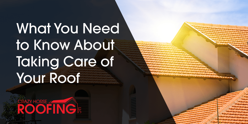 What You Need To Know About Taking Care Of Your Roof