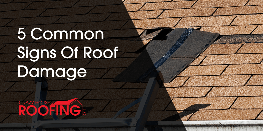 The snow, ice, and storms of winter can leave behind destruction in its path and, when it comes to your roof, the sooner you recognize it and fix it, the better! Nip the problem in the bud before it can turn into a big (and expensive) problem! Here are 5 common signs of roof damage to watch out for.