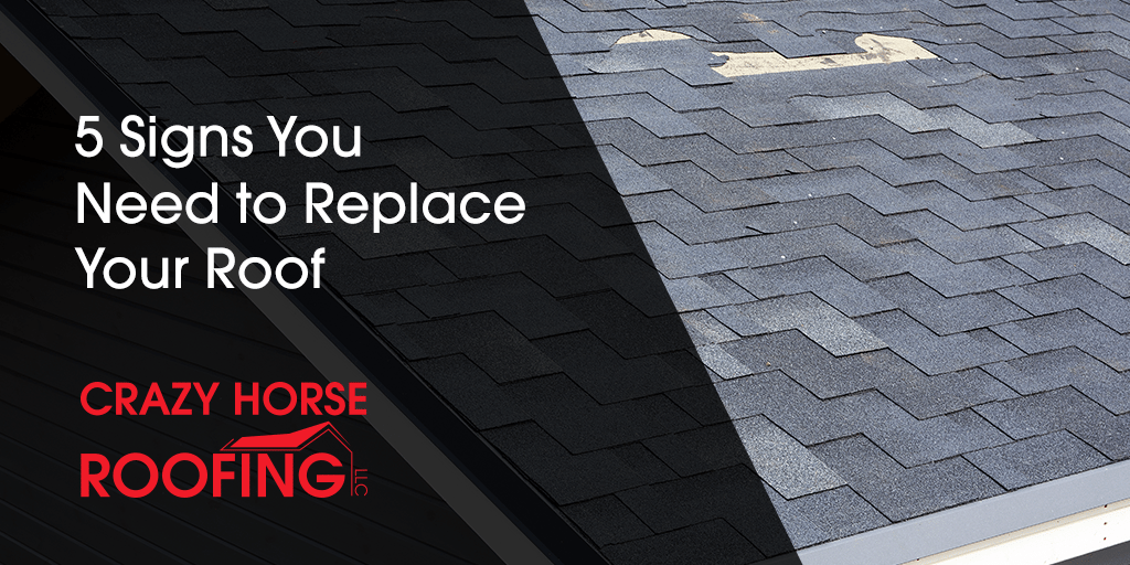 Even when you have taken good care of your roof, there will still come a time when your roof reaches the end of its lifespan. Here are 5 signs you need to replace your roof.