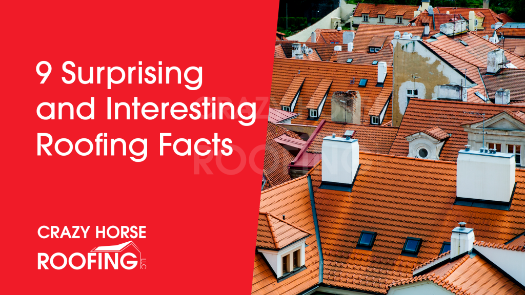 9 Surprising and Interesting Roofing Facts